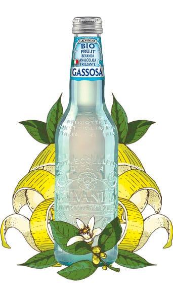 Organic Gassosa