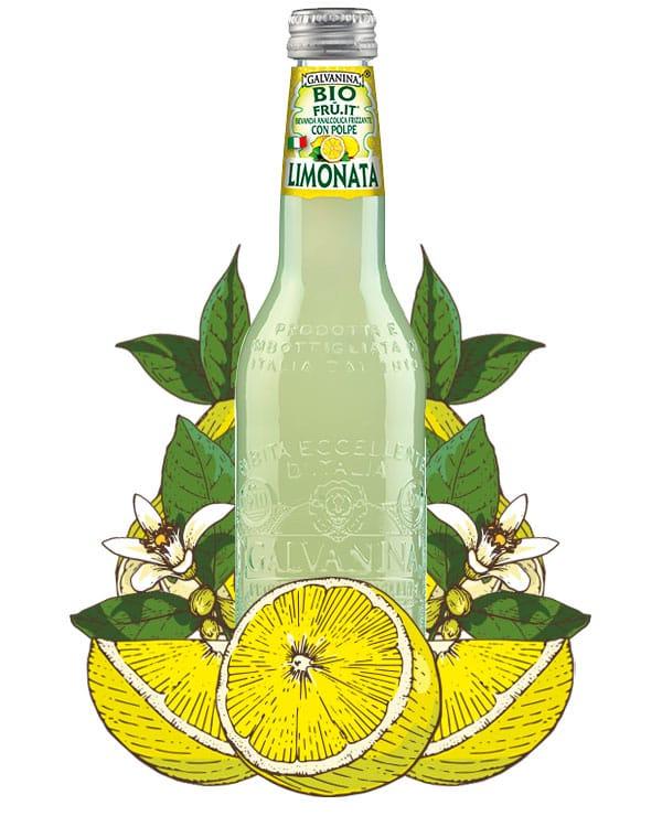 Organic Sparkling Lemon