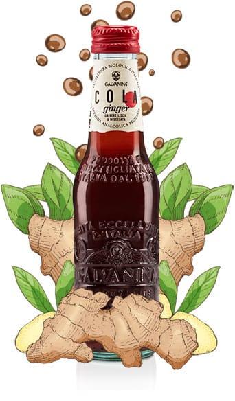 Organic Ginger Cola