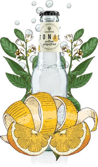 Organic Yellow Grapefruit Tonic