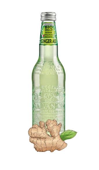 Ginger Ale Bio