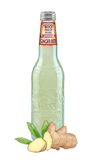 Ginger Beer Bio