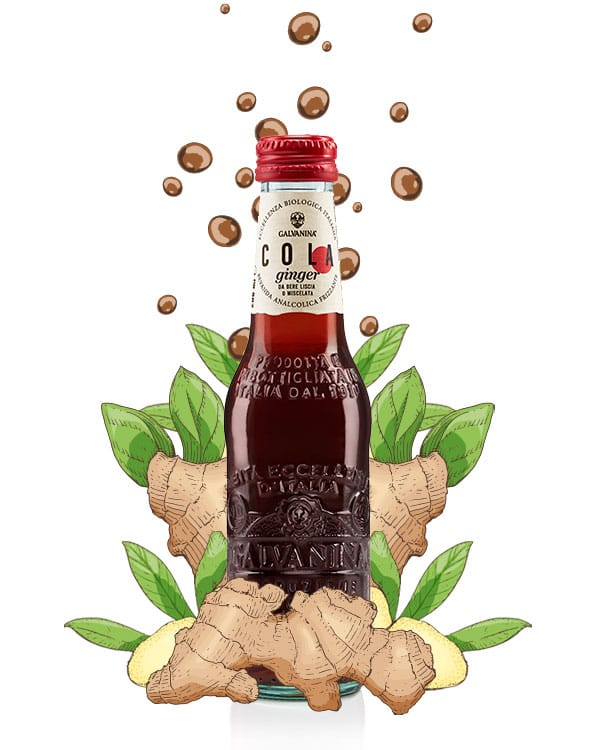 Cola Ginger Bio