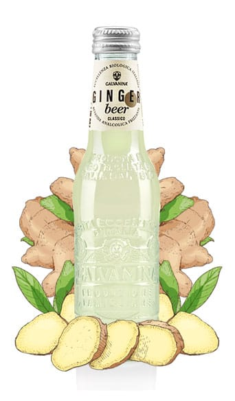 Ginger Beer Classico Bio