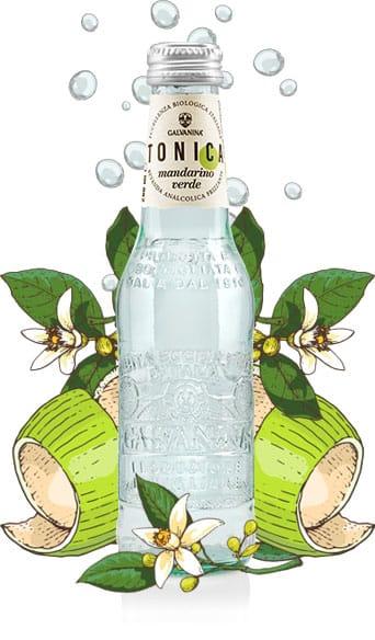 Tonica Mandarino Verde Bio