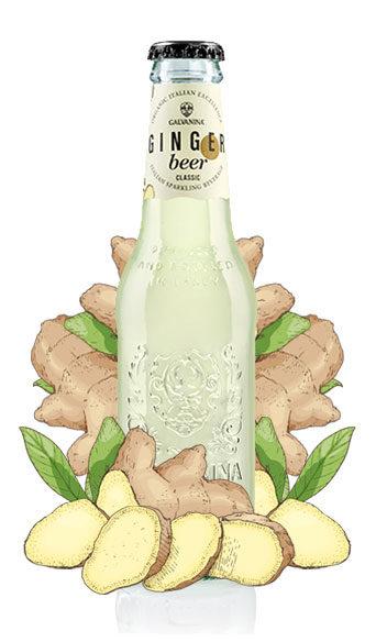 Ginger Beer Classico Bio